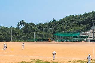 専用野球場